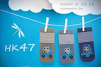 Махровые носочки для мальчика. НК 46
