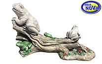 Тріо жаб на гілці дерева