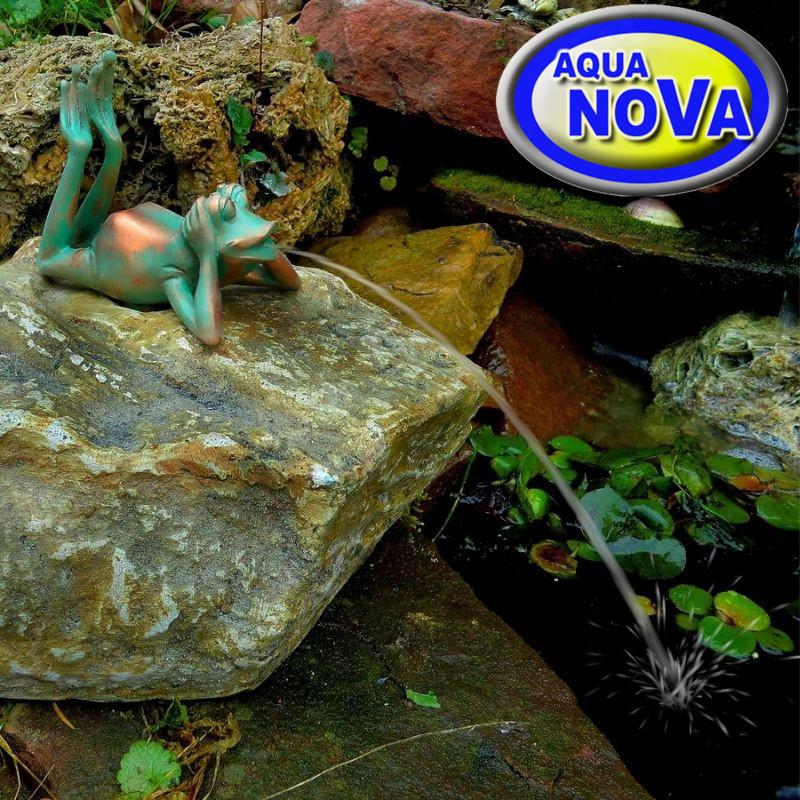 Лежащая лягушка на камне