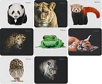 Коврик для мышки DEFENDER Wild Animals, 220x180x2