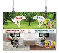 Дизайн рекламы / постера товаров для собак