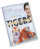 Дизайн и печать каталогов (пример каталога зоотоваров / товаров для животных)