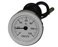 Термометр капиллярный (круглый) ф 52мм., 0-120?С. 010282