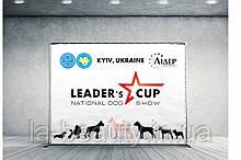 Дизайн и печать баннеров для выставки собак (брендволлы)