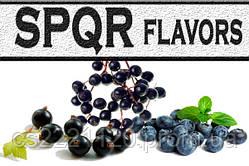 Ароматизатор SPQR Flavors Black Ice (Черные ягоды со льдом) 10 мл.