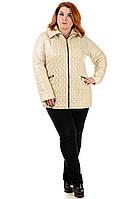Женская куртка большого размера Марина