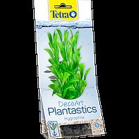 Растения TETRA (Тетра)