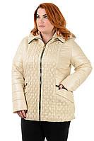Женская куртка большого размера Марина от производителя 52-62