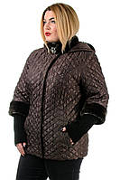 Женская куртка большого размера Эльвира от производителя 52-62