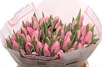 Тюльпан Роз, фото 1