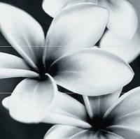 Плитка PRET-A-PORTER BLACK FLOWER COMPOSITION ПАННО (ИЗ 3ШТ)