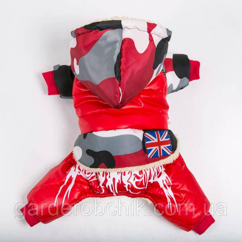 """Комбинезон зимний для собаки """"Британия"""" Одежда для собак"""