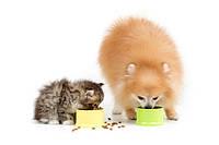 Профилактические корма. Ветеринарные корма для котов и собак