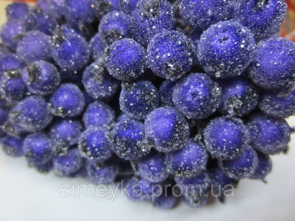 Калина морозная фиолетовая (сахарная, декоративная), соцветие из 40 ягод, диаметр ягоды 12мм