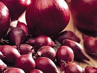 Лук красный круглый TOP Onions