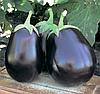 Семена баклажана Шерил F1 1000 семян Rijk Zwaan