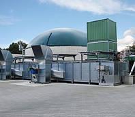 Ленточная сушилка для отходов от производства биогаза