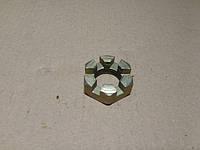 Гайка корончатая рулевого пальца МАЗ, КрАЗ М24*2  251035-П29