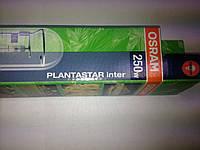 Лампа ДНАТ-250 Plantastar тепличная Осрам