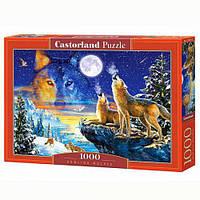 Пазлы Castorland 1000, С-103317