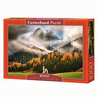 Пазлы Castorland 1000, С-103270