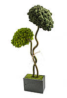 Стабилизированное дерево Woodaverage two gray
