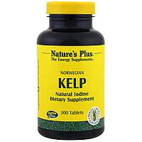 Келп, Норвежские бурые водоросли, Nature's Plus, 300 таблеток