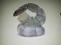 Креветка тигровая очищенная без головы с хвостом
