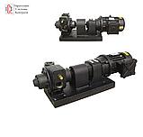 BDP-200 Gespasa - Високопродуктивний, вибухозахищений насос для бензину, дп, 220 вольт, 200 л / хв, фото 2
