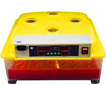 Инкубатор с автоповоротом яиц MS-36/144