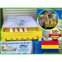 Румынский Инкубатор с механическим поворотом яиц ARGIS