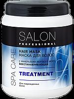 Маска Восстанавливающая с минералами Мертвого моря для волос TREATMENT 1000мл Salon Professional