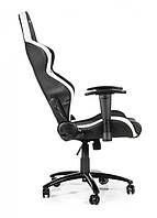 Кресло для геймера Akracing Player 601H  601H Black&White