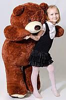 Медведь бурый 130 см