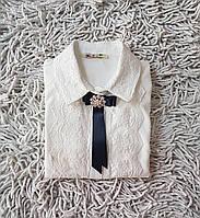 Блузы с жабо купить киев
