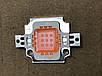Фіто світлодіод матричний СОВ SL-10F 10W full spectrum led PREMIUM 900mA (45Х45 mil) Код.59122, фото 2