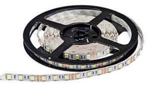 Світлодіодна стрічка Premium SMD 5050/60 12V біла (6000-6500K) IP20 Код.57310