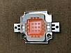Фіто світлодіод матричний СОВ SL-10F 10W full spectrum led PREMIUM 300mA (45Х45 mil) Код.59123, фото 2