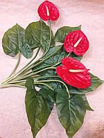 Цветы Каллы букет из калл красные