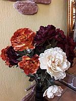 Цветы Пион цвет в ассортименте
