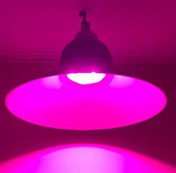 Светодиодный фитосветильник купольный  Highbay SL-100/F 100W FITO FULL spectrum Код.58824