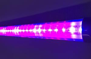 Светильник для растений светодиодный Т8-2835-1.2FS 16W IP20 (fito spectrum led) Код.58832