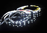 Светодиодная лента LED 12V, SMD2835, 60 д/м, белый холодный, фото 1