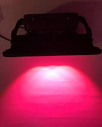 Светодиодный фитопрожектор SL-200GLens 200W IP66 (full fito spectrum led) Код.58941