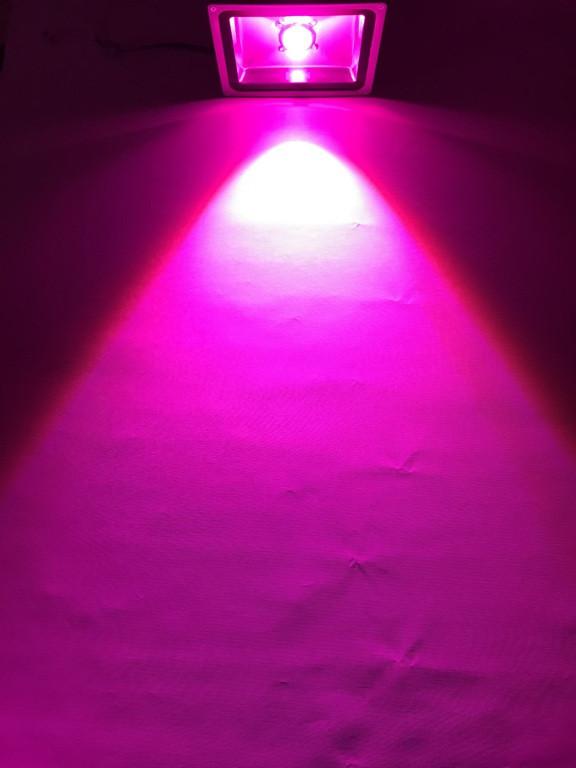 Светодиодный фитопрожектор SL-20GLens 20W IP65 (full fito spectrum led) Код.59062
