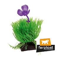 Растения FERPLAST (Ферпласт)