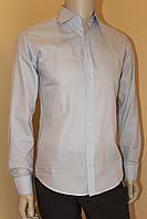Рубашка мужская голубая №10-12 - 2537/8, фото 1