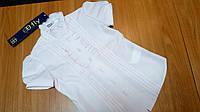 Блуза B.Fly с коротким рукавом, нежно-розовая р.128