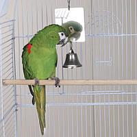 Зеркало для попугая. Металлическое зеркало