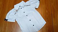 Блуза школьная Dana белая р.146